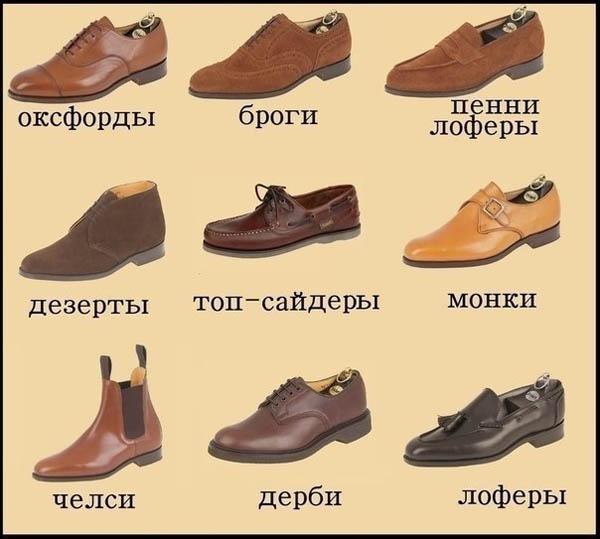 разновидности мужских туфель фото