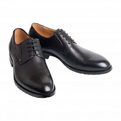 мужские туфли Zenden